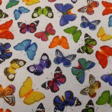 loneta-pillangó-14